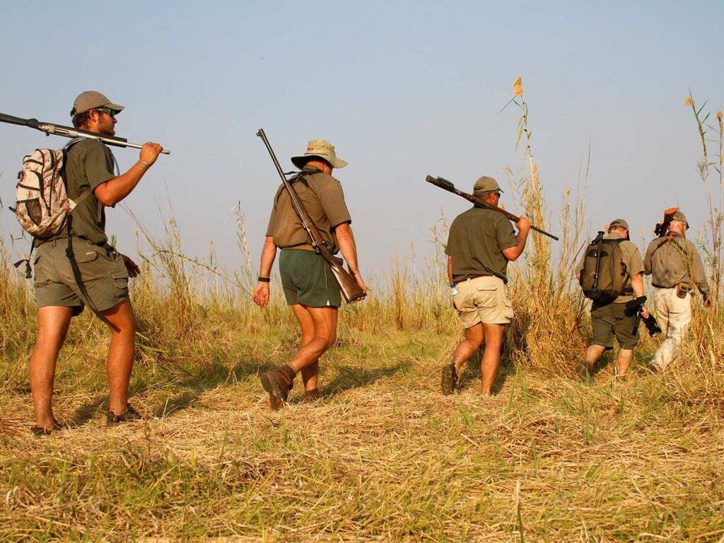 Five hunters trek through an African plain on a safari hunt.