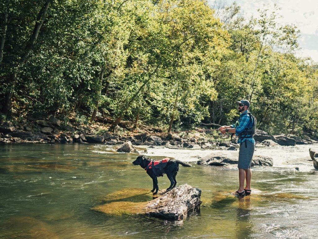 Angler and a dog in a river.