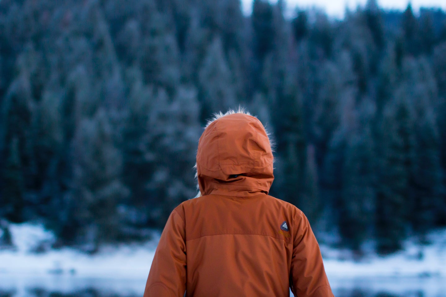 person standing in a winter wood scene with an orange park on