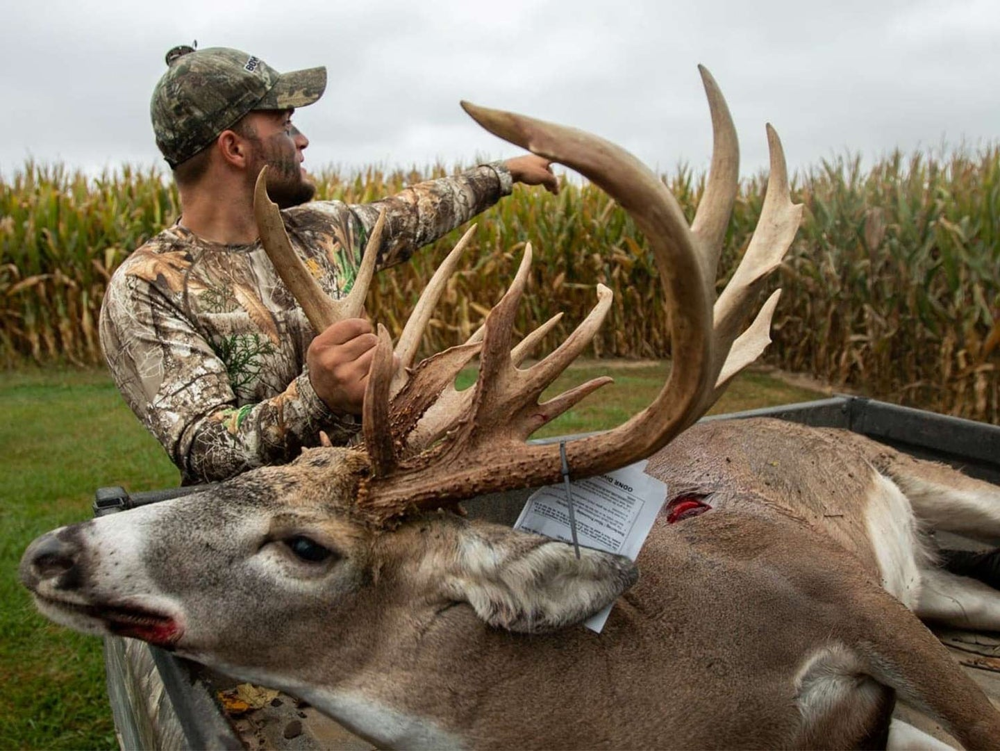 A hunter kneels by a whitetail deer and holds its head by the antlers.