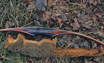 The Case for Squirrel Hunting, and Why It's Completely Underrated
