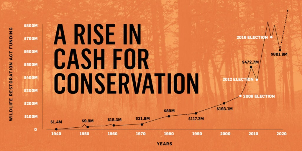 An orange graph that charts how much money gun and ammo purchases have contributed to wildlife conservation funding over the years.