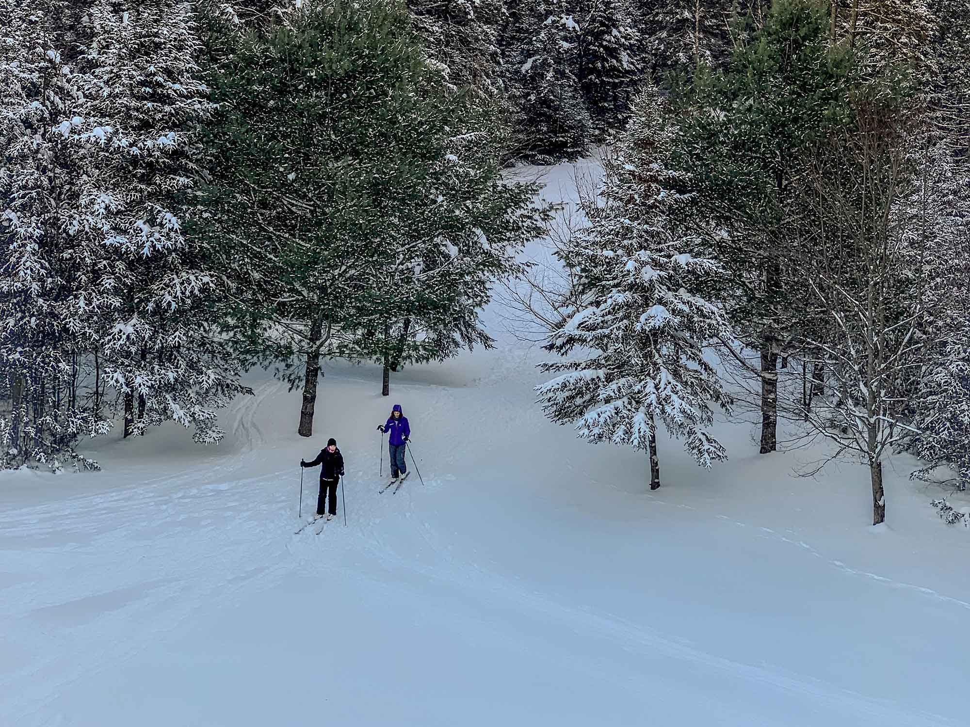 Two people skiing on the best cross country skis.