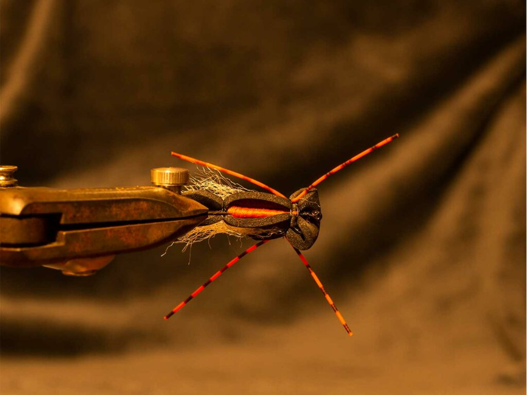 Step by step instructions of tying a cicada foam fly.