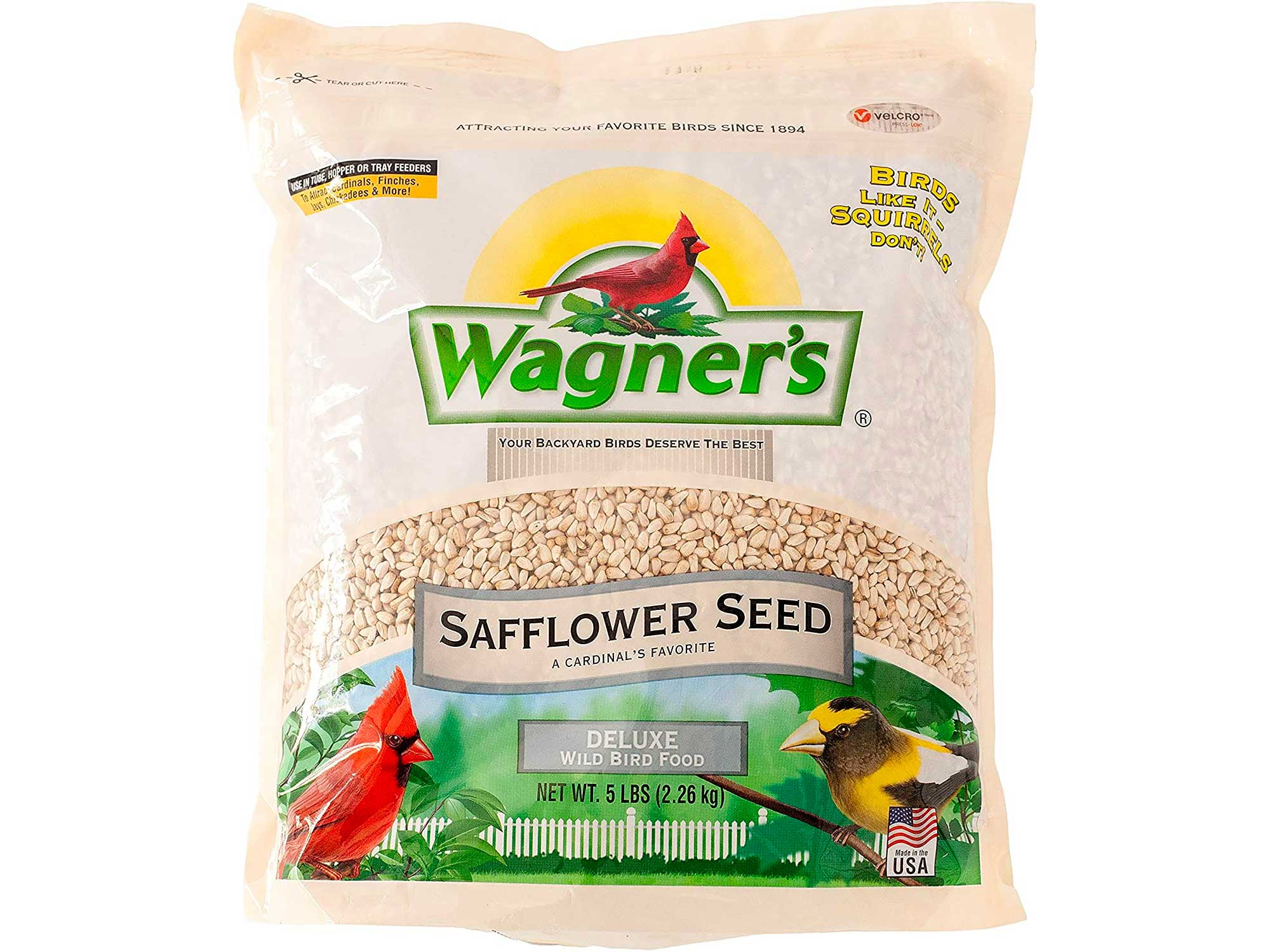 Wagner's safflower bird seed