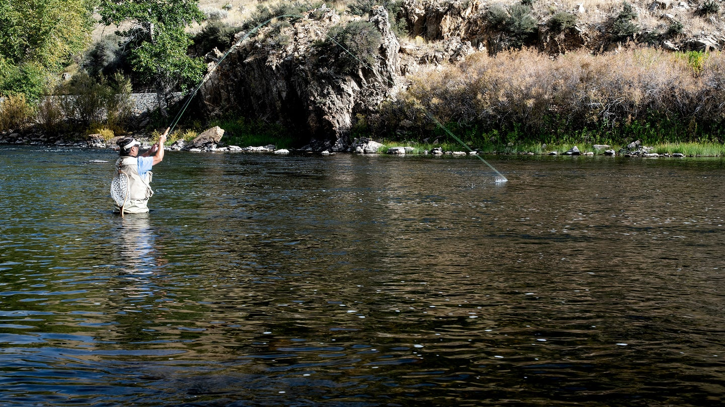 person in a stream fly fishing with the best fly rod