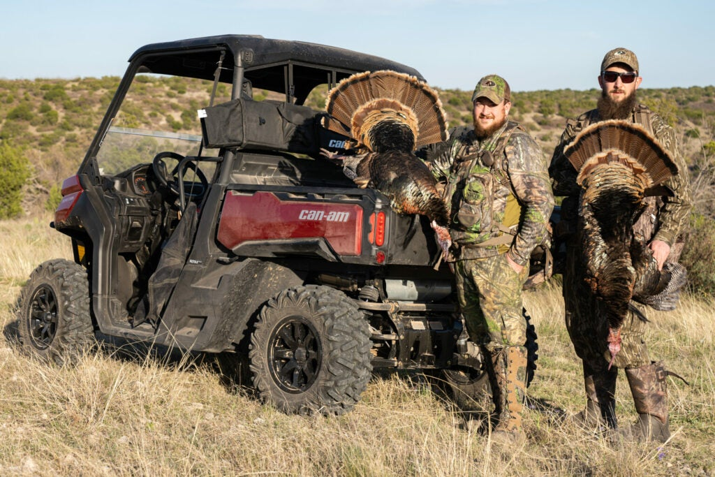 You can shoot up to four longbeards in Texas.