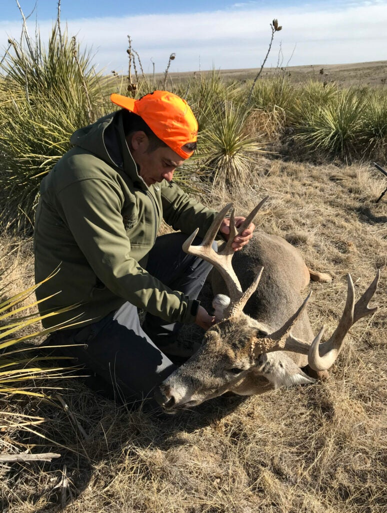 A hunter in a blaze orange had sits on the ground beside some yucca and a big old whitetail deer.