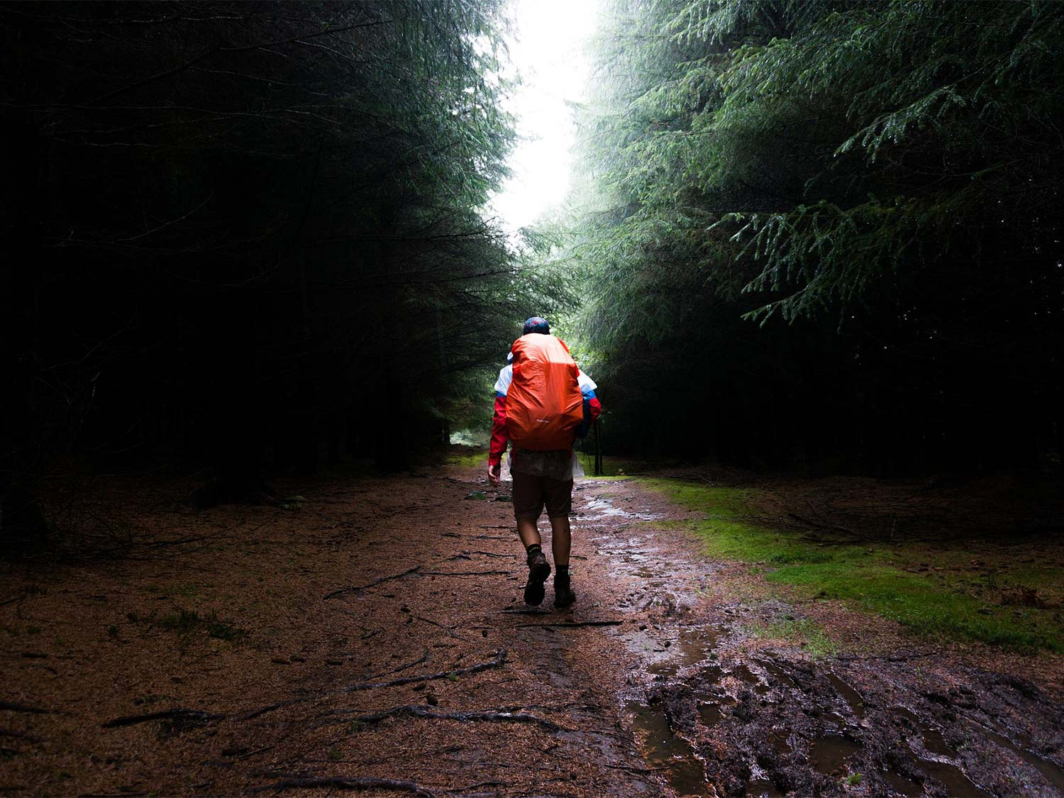 A lone hiker walks through a muddy trail, wearing the best men's waterproof boots.