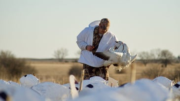 Keep it casual and don't get too addicted to snow goose hunting.