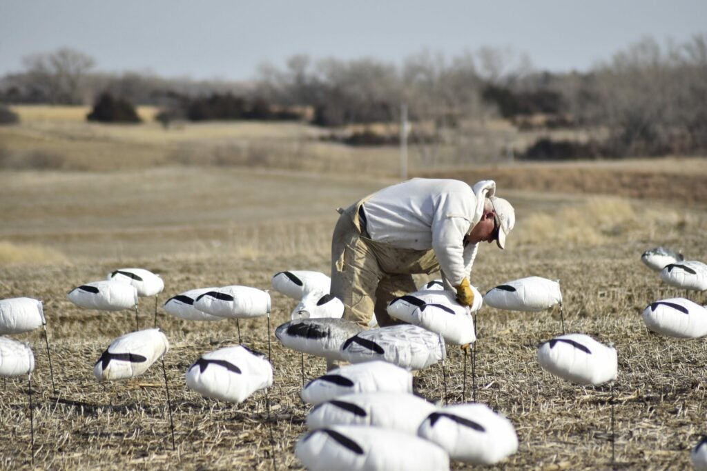 Bring some extra shotshells if you are a snow goose guest.
