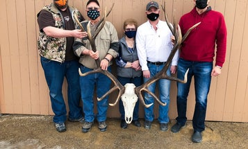The New World Record Non-Typical Archery Elk