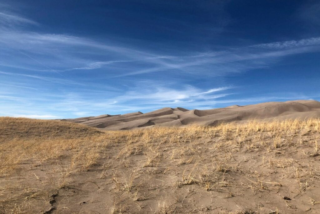 The Great Sand Dunes National Park does not allow hunting, but the Preserve part does allow hunting.