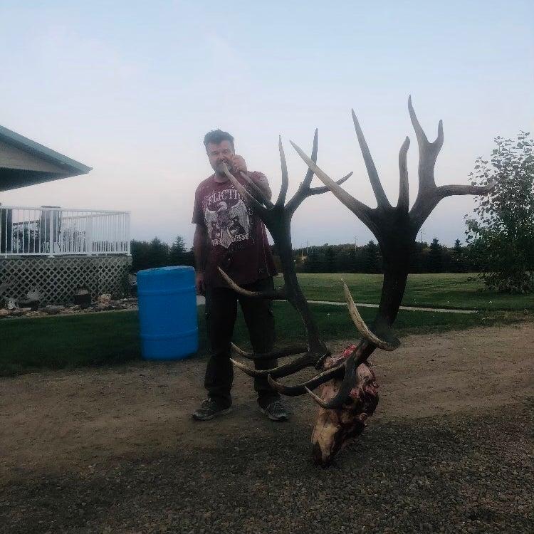 An Alberta bowhunter stands beside the giant skinned skull of a bull elk.