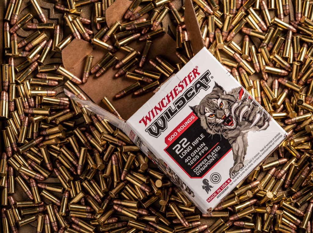 A box of Winchester Wildcat 22 LR ammo.