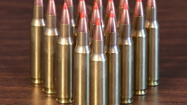 The .222 died, but it also became the parent case for a variety of now famous rifle cartridges.