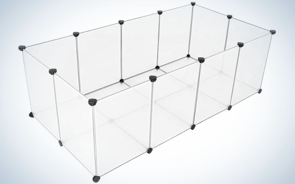 A glass fence cage with bottom for small animals.