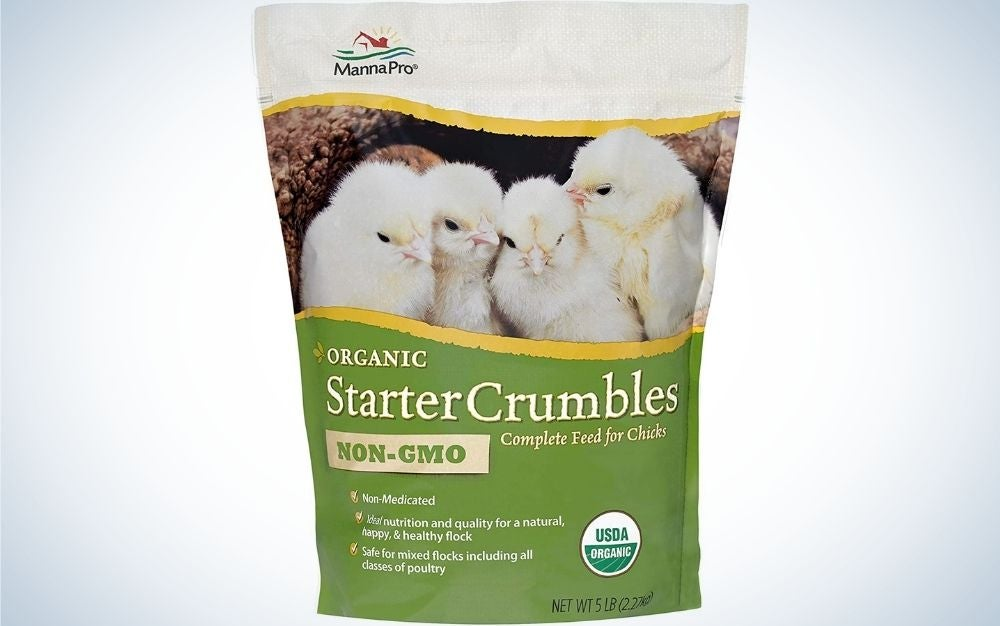 A white and green packing with four little chickens into picture.