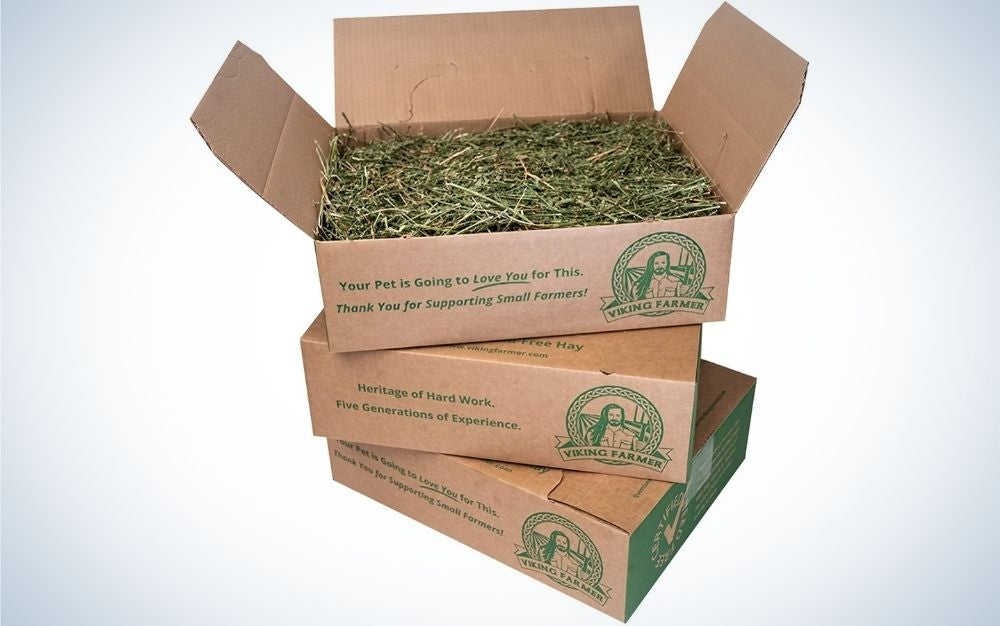 Three cardboard boxes with green writing on them and green grass inside them.