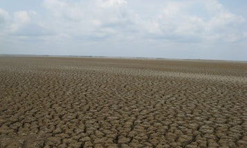 The Marshes of Alabama's Mobile Bay Are Disappearing—Fast