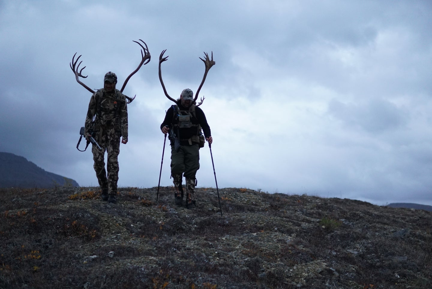 Two non-resident caribou hunters packing out meat and antlers in the proposed closure area.