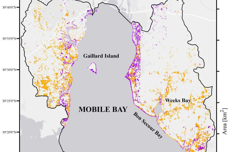 Map of Mobile Bay habitat and marsh loss.