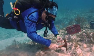 Coral Reef Restoration Underway in the Florida Keys, Just in Time for Earth Day