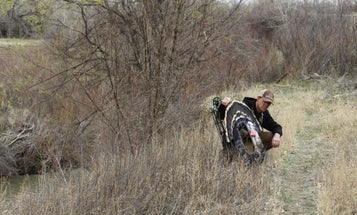 How to Scout for Deer During Spring Turkey Hunts