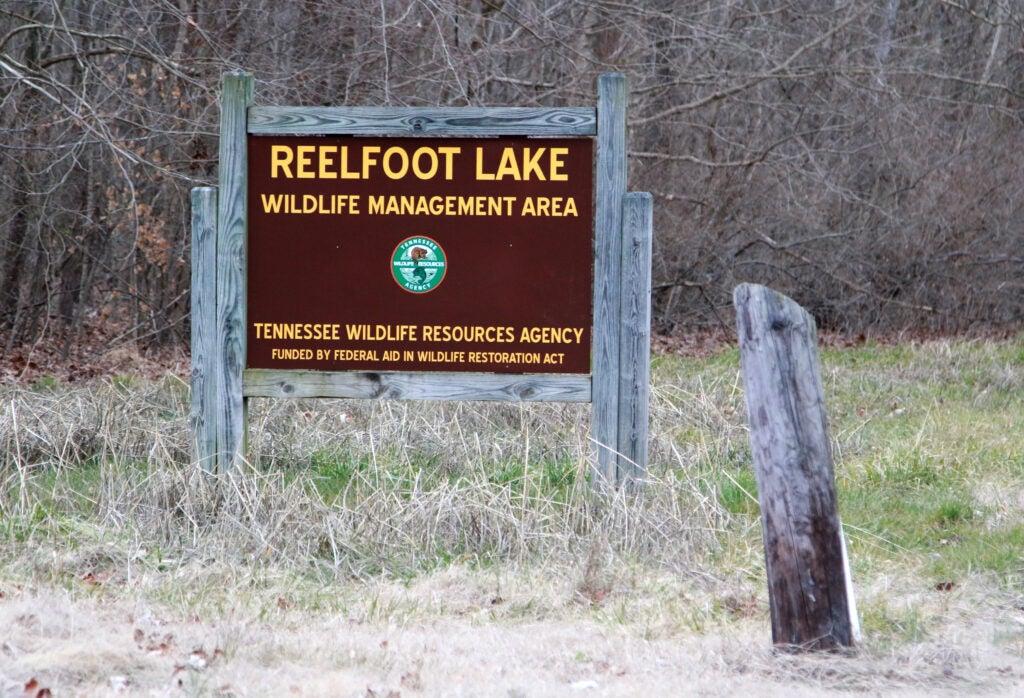 Reelfoot Lake Wildlife Management Area