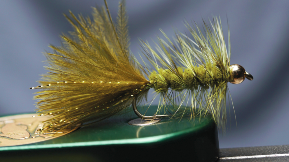 The wholly bugger is a common fly for beginners.