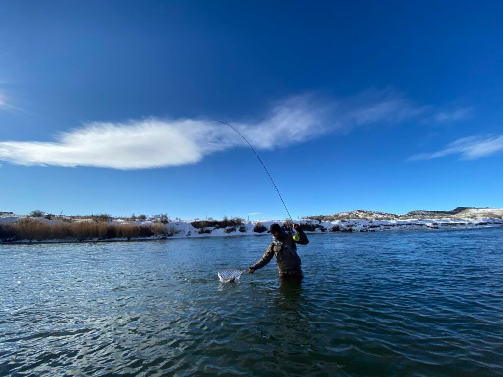 An angler nets a trout in a Wyoming river.