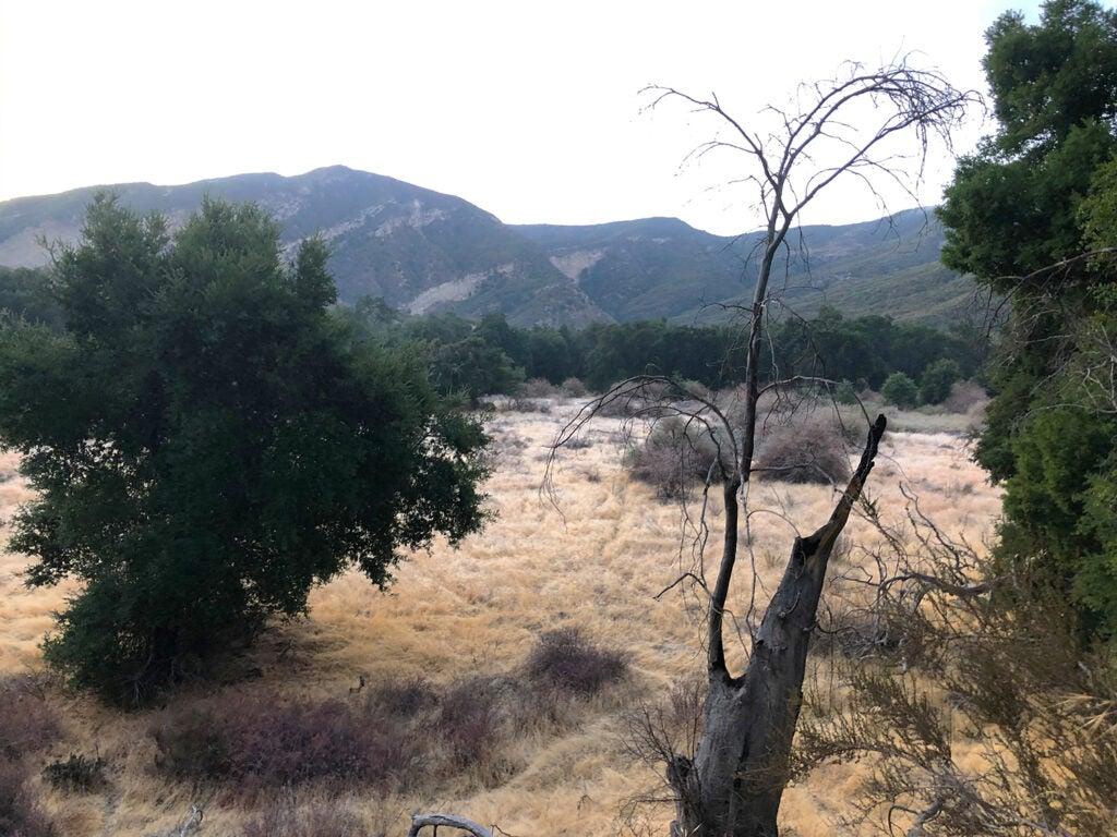 california public lands