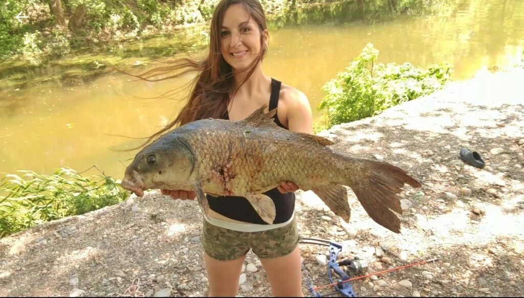 Buffalo fish have a large hump back to distinguish them from carp.