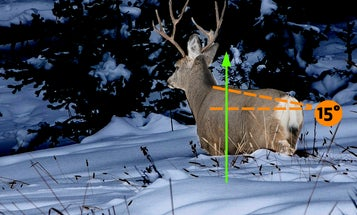 The Dead-Zone Paradox: Why Shot Placement That Appears Perfect Can Be Deceiving on Big Game