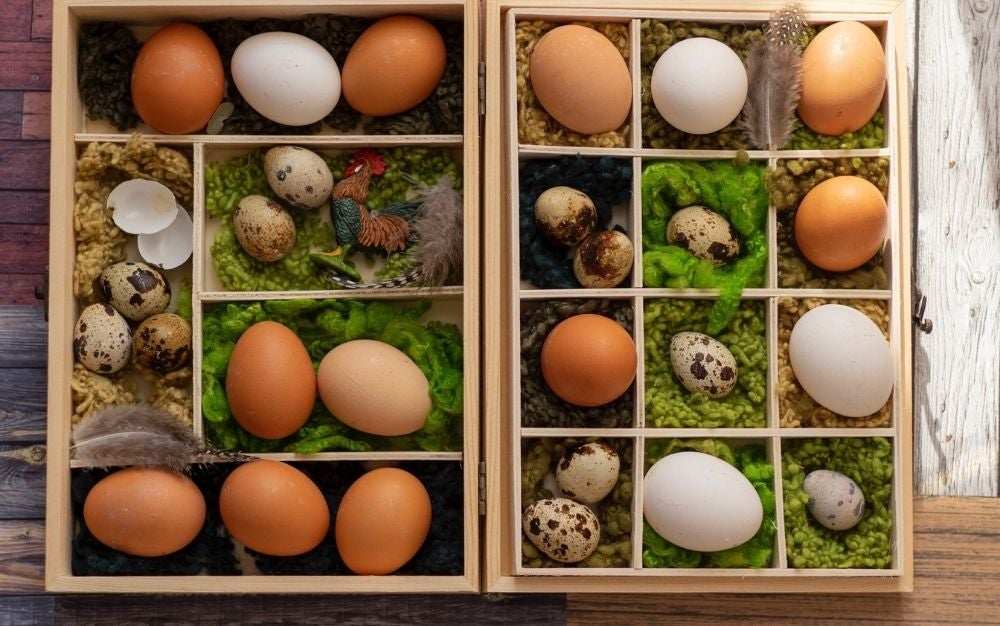 Several different types of egg sizes and colors placed in wooden boxes.