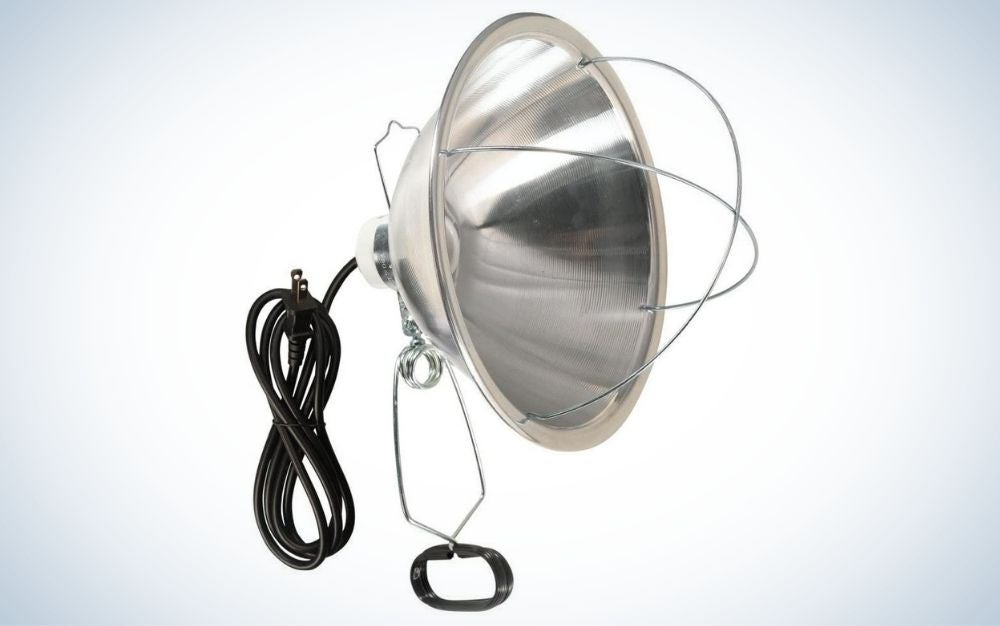 Silver clamp lamp reflector and bulb guard with black cord for chicken coop
