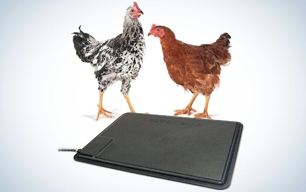 Thermo-Chicken Heating Pad is one of the best chicken coop heaters