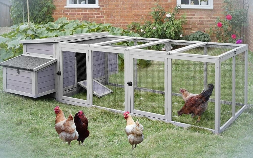 Large gray chicken coop with with nest box