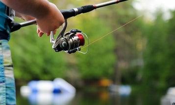 Best Fishing Reels: Spinning Reels, Fly Fishing Reels, Saltwater Reels, and More