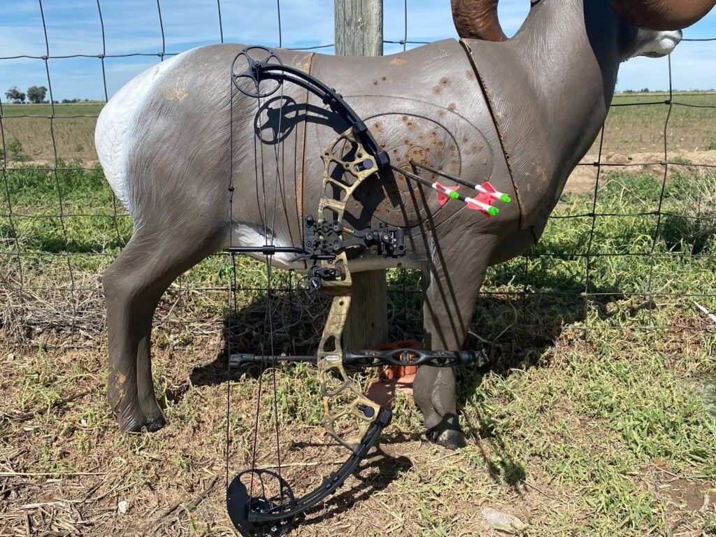 Hunting bow leaning against target with two arrows in the bullseye