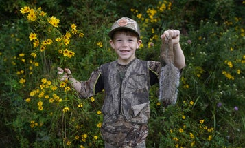 The Ultimate Guide to Hunting Spring Squirrels