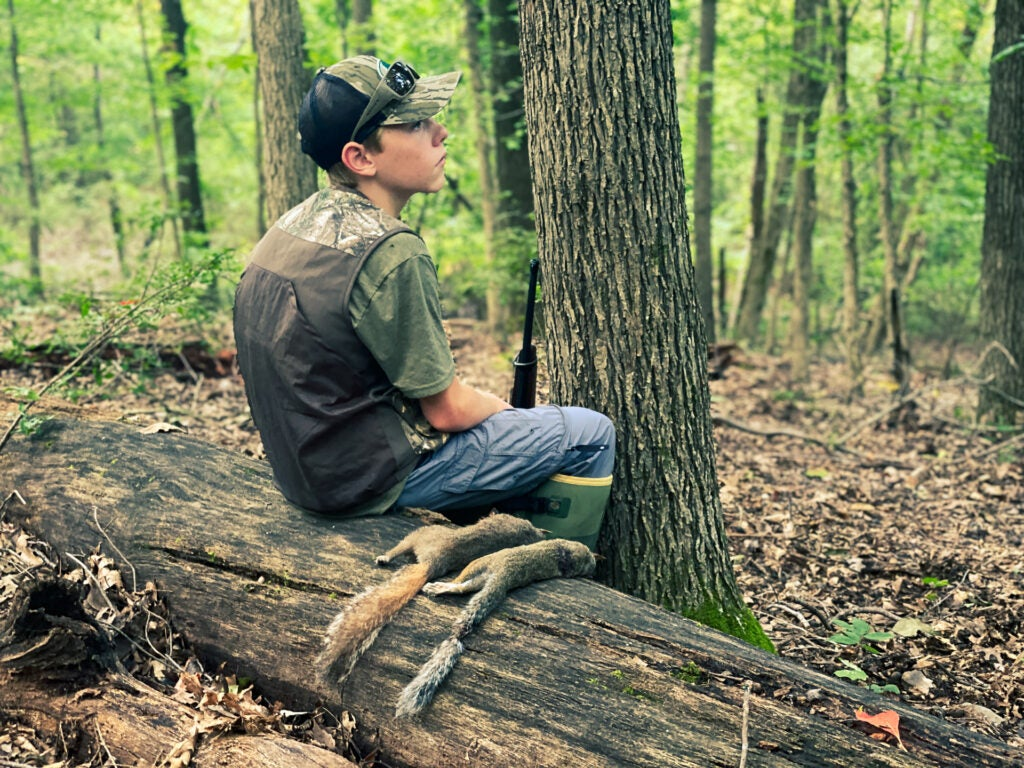 Target southern states for the best spring squirrel hunting opportunities.
