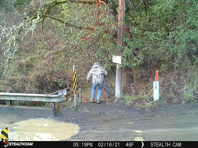 Poachers Rob Spawning Oregon Steelhead