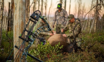 How to Choose a Compound Bow—and Set It Up—for Elk Season