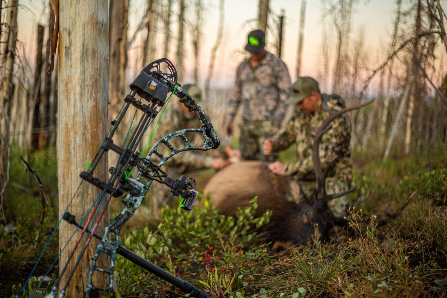 The best way to set up and elk bow.