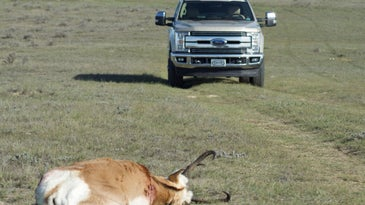 THere's no need for a new hunting truck.