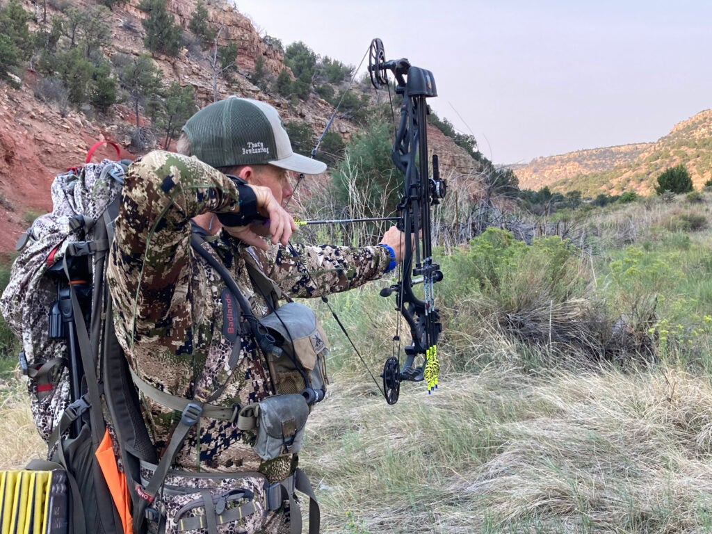 Forget speed. Accuracy is waht you need in an elk bow.