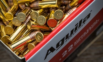 More Than 7 Million Rounds of Ammo Bound for U.S. Were Stolen in Central Mexico