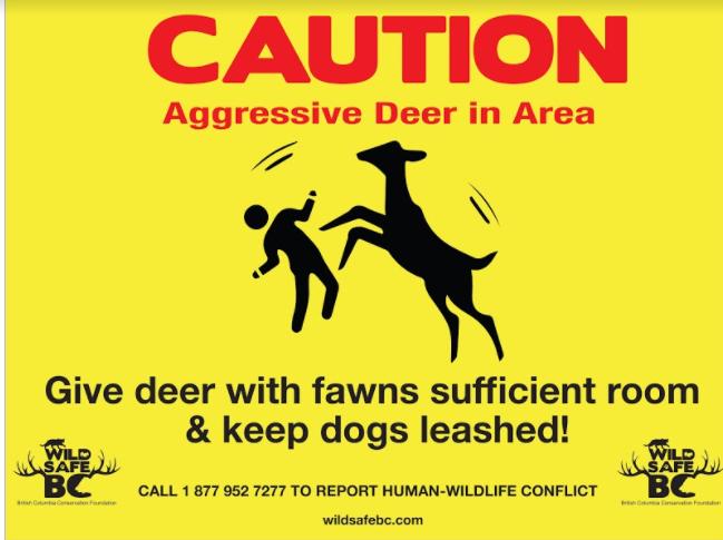 deer attack sign