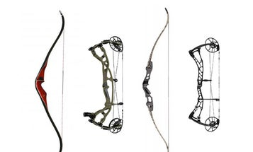 Recurve vs. Compound Bow: The Differences in Performance, Design, and Shooting Style